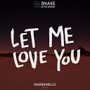 DJ Snake feat. Justin Bieber - Let Me Love You (Don Diablo Remix)
