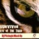 Survivor - Eye Of The Tiger Dj Pitchugin Mash Up