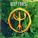 Deep Forest - Sweet Lullaby apollo 440 remix