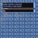 Dennis Sheperd Cold Blue Feat Ana Criado - Fallen Angel Cold Blue Edit