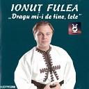 Ionu Fulea - Toat Lumea Are Un Dor