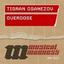 Tigran Oganezov - Jamkochyan