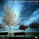 BEAUTIFUL VOICES 002 (a.k.a.VOCAL-CHILL MIX 2)