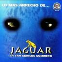 Jaguar De San Marcos Guerrero - La Del Chongo Negro