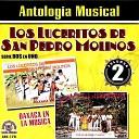 Los Luceritos de San Pedro Molinos - Volvere