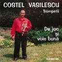 Costel Vasilescu - Dulce i Amar