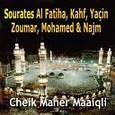 Maher El Muaiqli - Sourate An Najm L toile