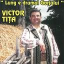 Victor Ti a - Hai M ndru Pe Z voi