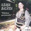 Ileana Bac tea - Ce R u Am F cut La Lume