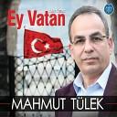Mahmut T lek - Minnet Eylemem