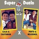 Caju & Castanha - O Ladrão Besta e o Sabido