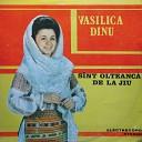 Vasilica Dinu - Tinere e Cum Te Duci