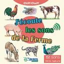 Chiff Chaff - Vache ruminant