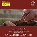 Salvatore Accardo - Partita No 1 per violino solo in Si minore BWV 1002 Double sarabande