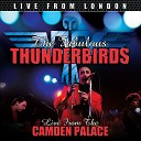 The Fabulous Thunderbirds - One s Too Many Live