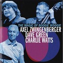 AXEL ZWINGENBERGER - The Chicken And The Hawk Boogie