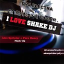 Pure Honey Project - I love Shake DJ Alex Sprinter Pure Honey Mash Up