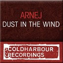 CLHR067: Arnej - Dust in the wind