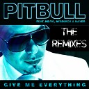 Give Me Everything (Remixes)