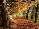 Баста - Осень