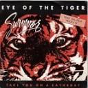 Survivor - Eye Of The Tiger Antonio Desiderio 2012 Remix