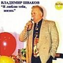 Владимир Шваков - Горький мед