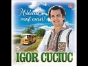 Igor Cuciuc - moldoveni veniti acasa