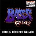 Bass Junkie - Beyond Time Beyond Bass