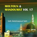 Salih Abdelmaqsoud Salih - Sourate An Nisa Matno chatibiya