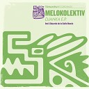 Mellow Sonic - Aquila 303 Synesthesics Remix