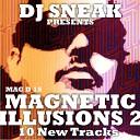 Magnetic Illusions 2