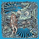 Electric Moon - The Picture