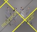 Freezepop - Strange