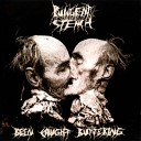 Pungent Stench - Smash