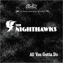 The Nighthawks - Down To My Last Million Tears