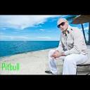 Pitbull - 2011