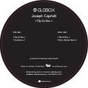 Joseph Capriati - Flip Da Box Dario Zenker Remix