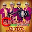 Los Cardenales De Sinaloa - Elenita En Vivo