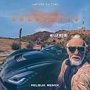 Vintage Culture - Hollywood Felguk Remix