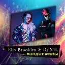 Dance Hot Mixes: Popular Radio Mixes