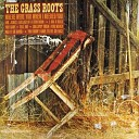 The Grass Roots - Only One