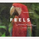Calvin Harris and Pharrell Williams feat Katy Perry Big Sean - Feels Denis First Remix Radio Record Cover