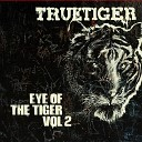 Eye Of The Tiger Volume 2
