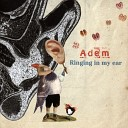 Adem - Friends Beware