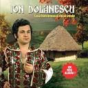 Ion Dol nescu - 19 Tudorito nene