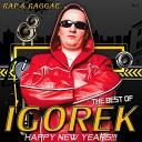Best of RAP & Reggae Happy New Years Vol.2