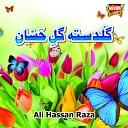 Ali Hassan Raza - Sirf Ek Baar