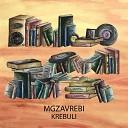 mgzavrebi - kai bichebi arian