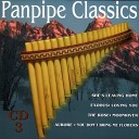Gino Marinello Orchestra - Sunshine Reggae