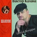 Viktor Kalina - Shkol nye Goda